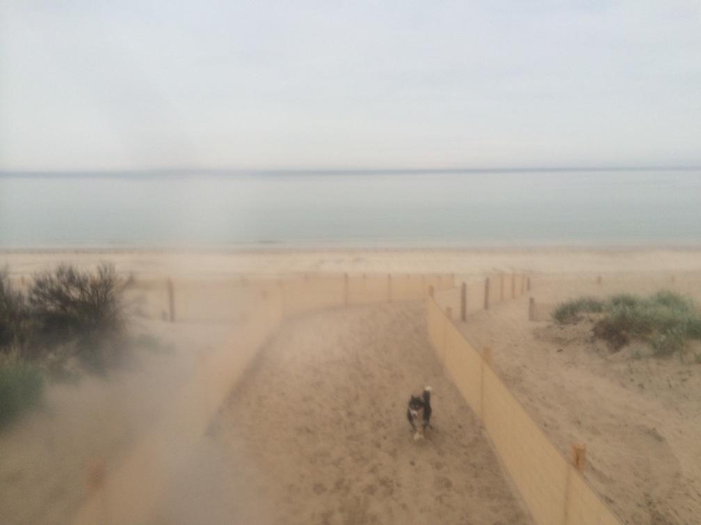 1. beach & chezz