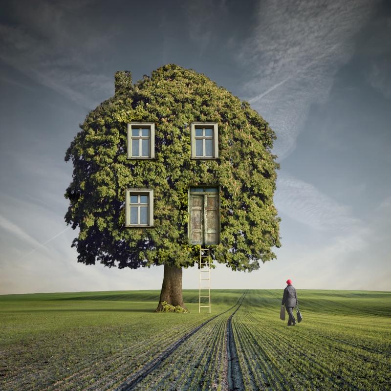 3. wooden_house_by_kleemass-d3jc2v7
