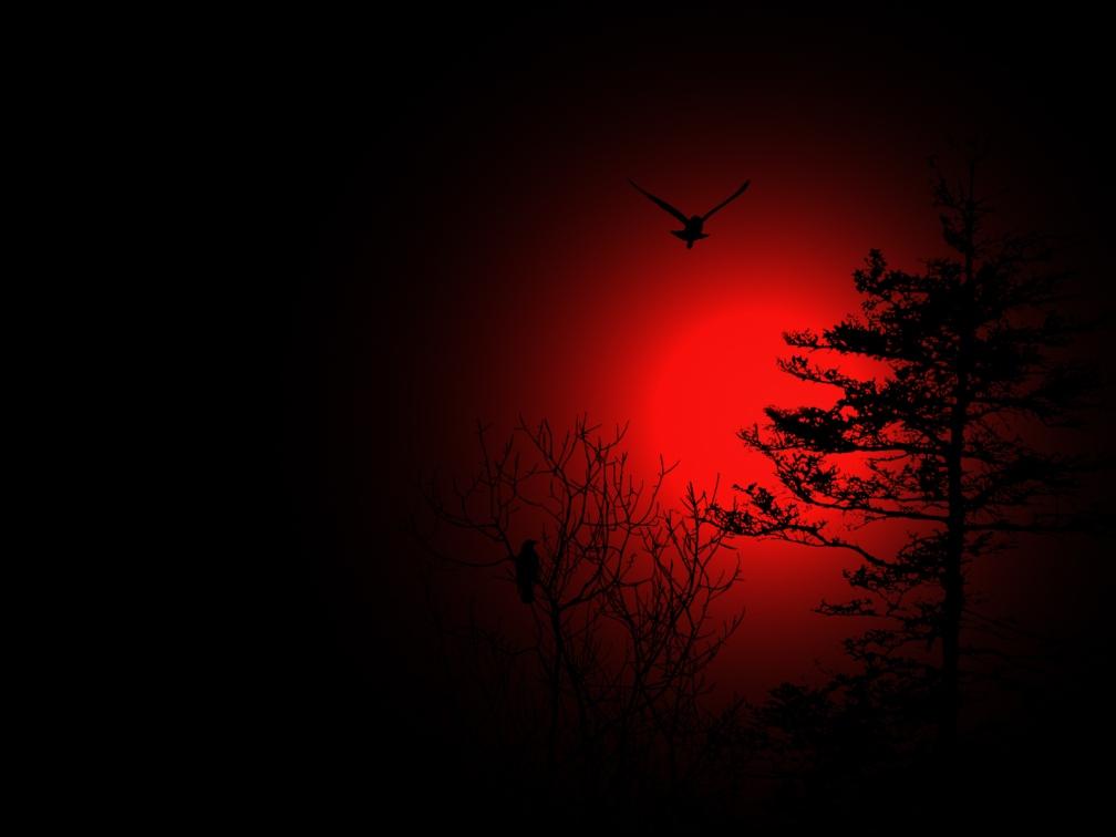 blood_moon_by_darkriderdlmc-d4rzhrg