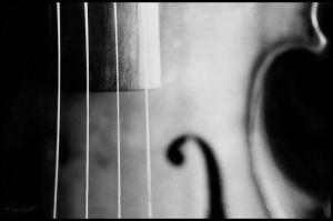 violin_by_soozn