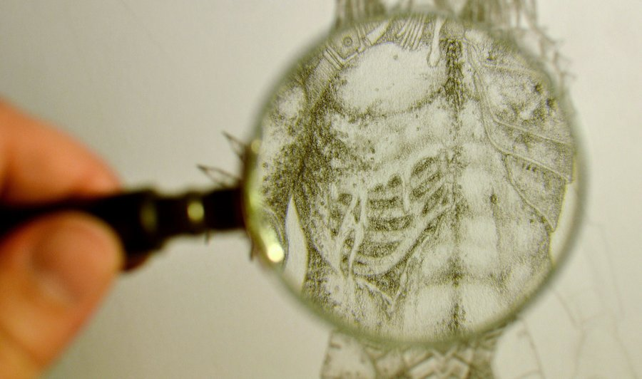 02 in_my_magnifying_glass_01_by_coollekotten-d4jgu83