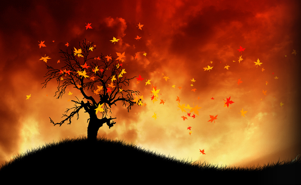 21 autumn.jpg